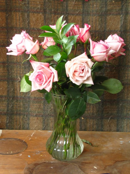 pink_roses_photo